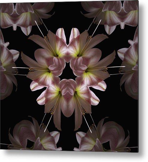 Mandala Metal Print featuring the digital art Mandala Amarylis by Nancy Griswold
