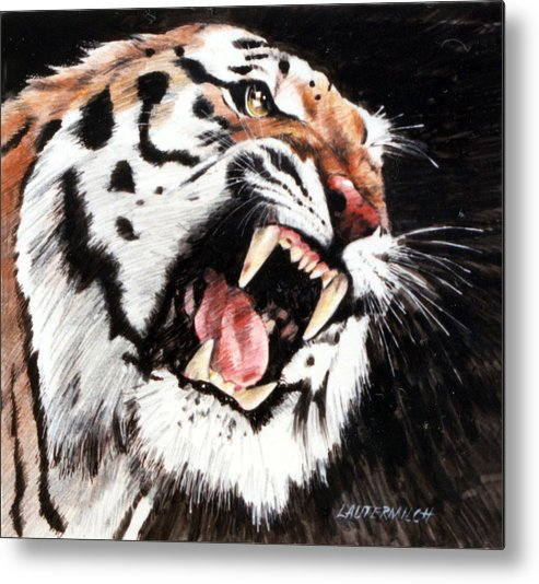 Tiger Roaring Metal Print featuring the painting Tiger by John Lautermilch