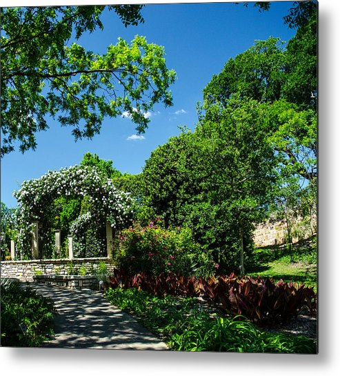 Blue Sky Metal Print featuring the photograph Path To The Roses by Carrie Murphey