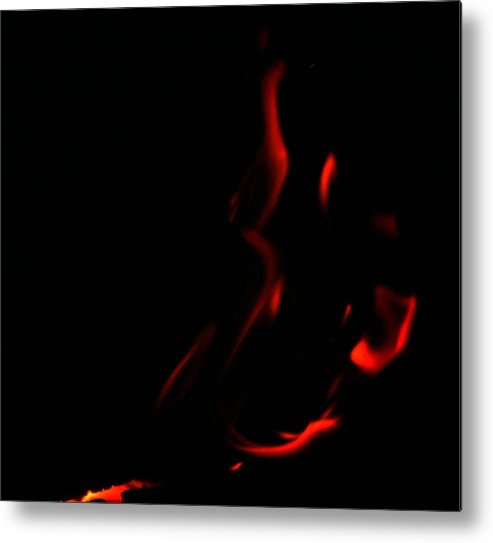 Fire Metal Print featuring the photograph Flamenco by Andreea Marian