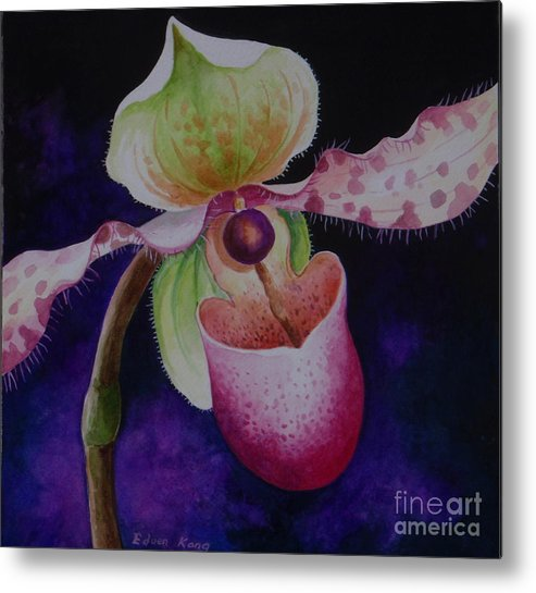 Orchid P Chiquita Metal Print featuring the painting Borneo Orchid P Chiquita by Edoen Kang