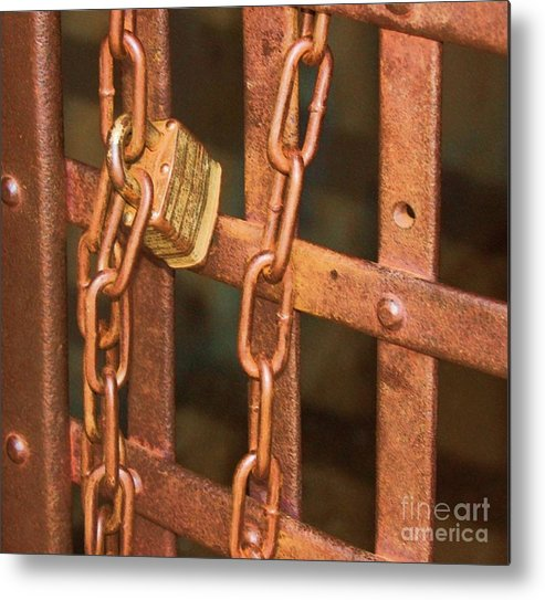 Metal Metal Print featuring the photograph Tarnished Image by Debbi Granruth