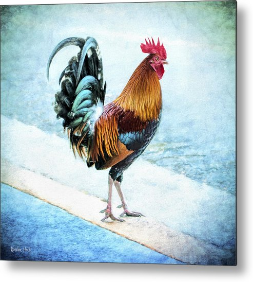 Chicken Metal Print featuring the photograph Why Did The Chicken... by Korrine Holt