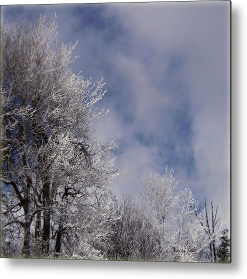 Landscape Metal Print featuring the photograph Icy Blues by Bonita S Sylor