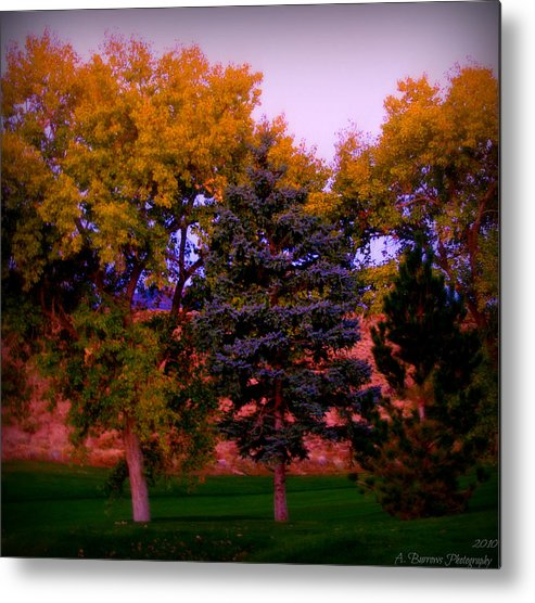 Tanoan Country Club Metal Print featuring the photograph Autumn On The Fairway by Aaron Burrows