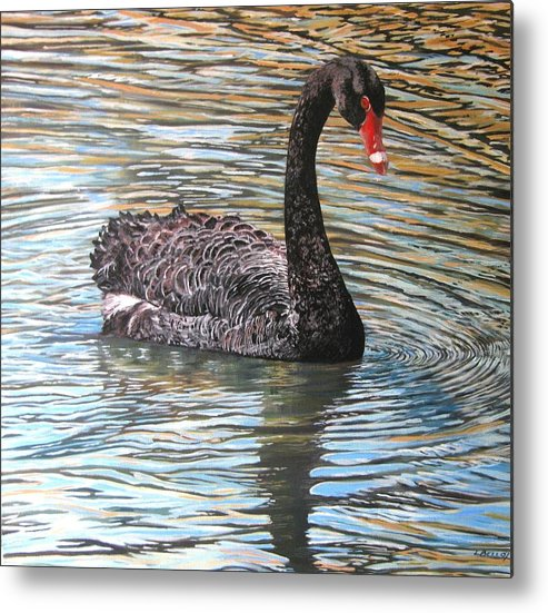 Black Swan Metal Print featuring the painting Black Swan On Water by Leonie Bell