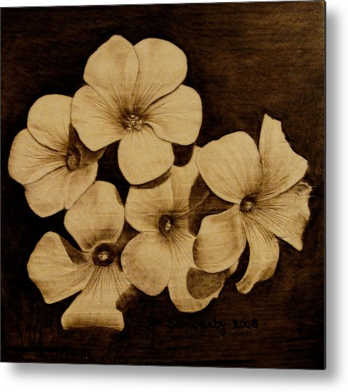 Pyrography; Sepia; Flower; Petals; Boquet; Pansy; Violet; Metal Print featuring the pyrography Bursting by Jo Schwartz