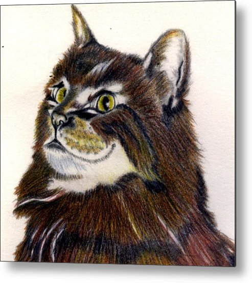Animal Metal Print featuring the drawing Watching by Penny Everhart