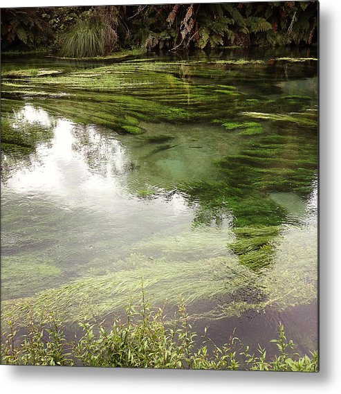 Marsh Metal Print featuring the photograph Spring Water by Les Cunliffe