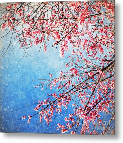 April Metal Print featuring the photograph Pink Blossom by Setsiri Silapasuwanchai