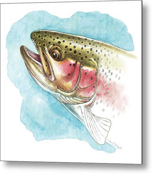 Jon Q Wright Metal Print featuring the painting Rainbow Trout Study by JQ Licensing