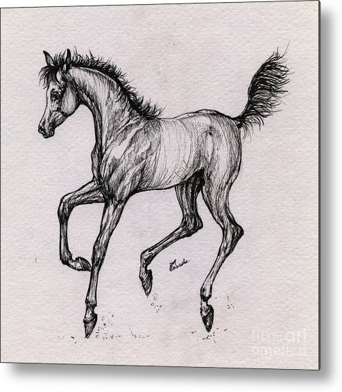 Foal Metal Print featuring the drawing The Playful Foal by Angel Ciesniarska