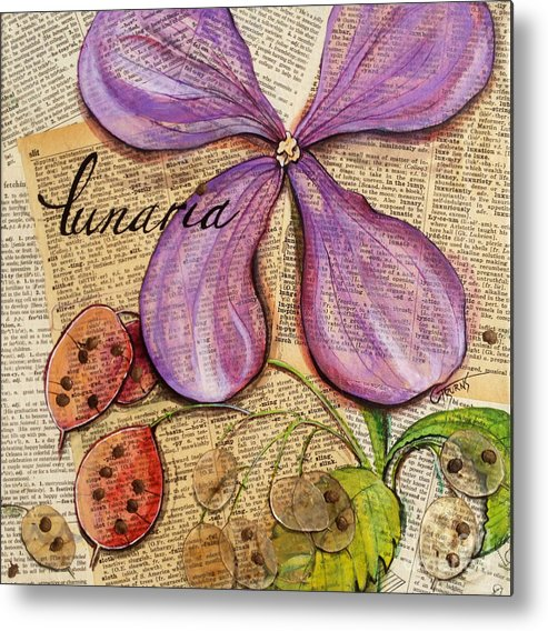 Biannual Metal Print featuring the painting The Stages Of Money Plant Or Lunaria by GG Burns