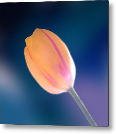 Marcin Metal Print featuring the photograph Tulip by Marcin and Dawid Witukiewicz