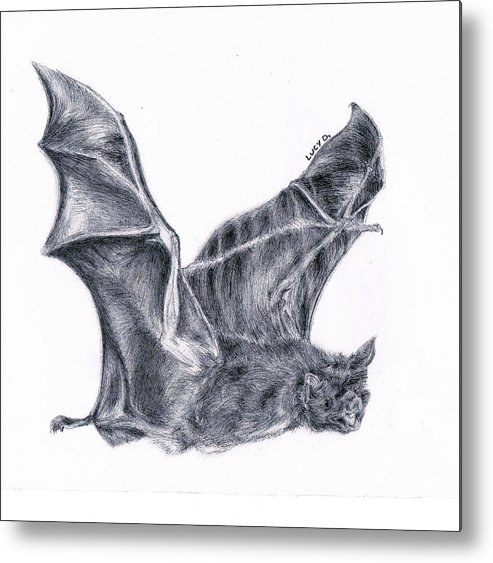 Bat Metal Print featuring the drawing Bat by Lucy D
