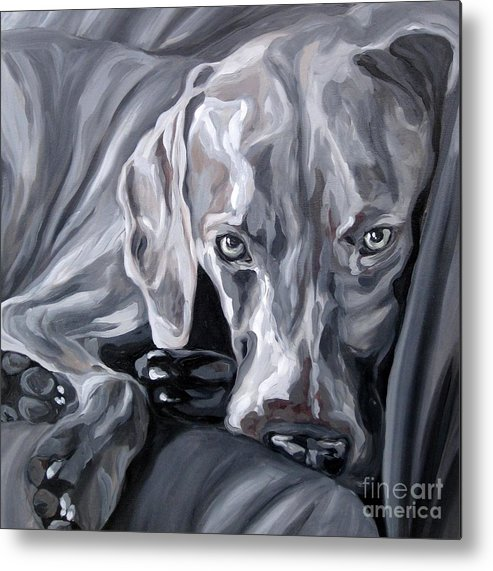 Weimaraner Metal Print featuring the painting Weimaraner by Alli Bell