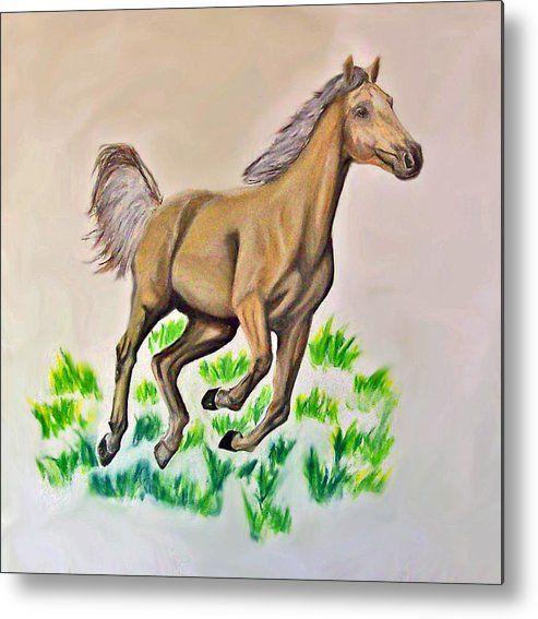 Palomino Metal Print featuring the drawing Palomino by Crystal Suppes