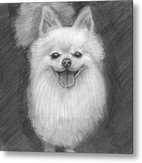 Dog Metal Print featuring the drawing A Doggie 4 Xmas by Katie Alfonsi