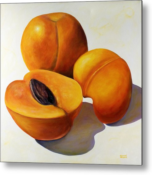 Apricots Metal Print featuring the painting Apricots by Shannon Grissom