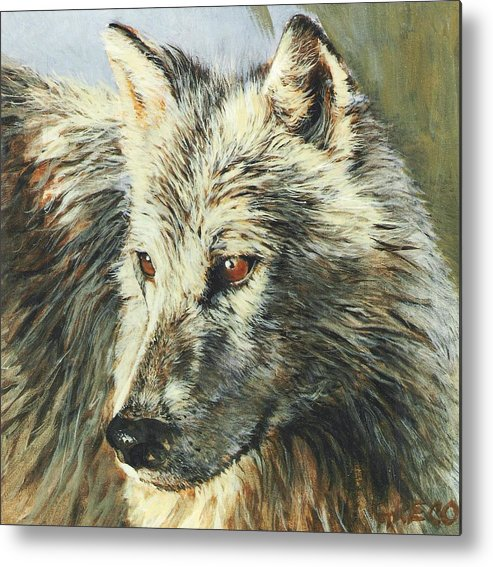 Wolf Metal Print featuring the painting Arctic Wolf by Steve Greco
