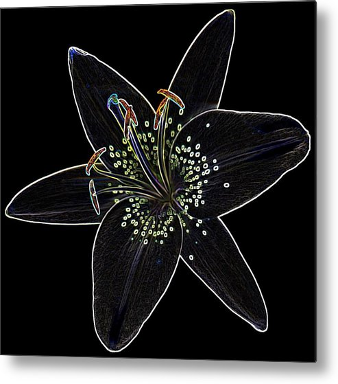 Scanography Metal Print featuring the digital art Black Velvet Lily by Deborah J Humphries