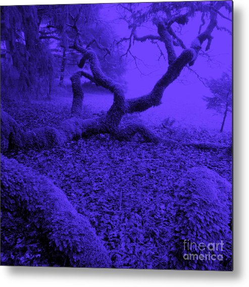 Blue Metal Print featuring the photograph Blue Dreaming Moon by JoAnn SkyWatcher