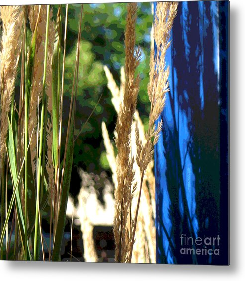 Blue Metal Print featuring the photograph Blue Green by Gary Everson