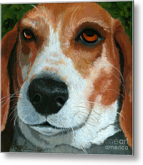 Dog Art Metal Print featuring the painting Bonnie - Beagle Painting by Linda Apple