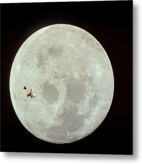 Animal Framed Prints Metal Print featuring the photograph Fifi The Astronut by Michael Ledray