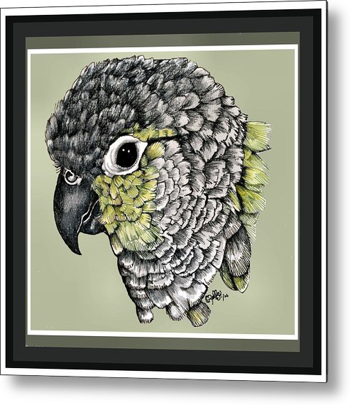 Metal Print featuring the drawing Green Cheek by Crystal Rolfe