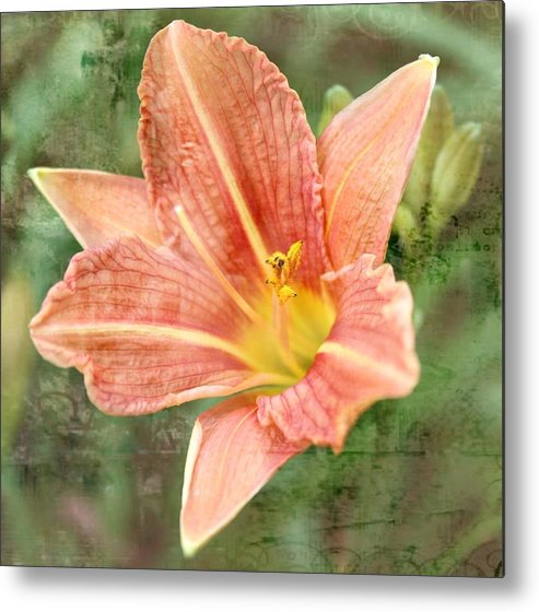 Lily's Metal Print featuring the photograph Lily In A Haze by Cathie Tyler