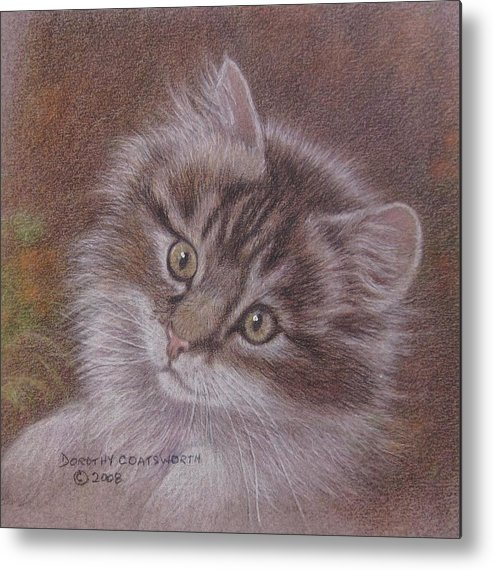 Metal Print featuring the painting Tabby Kitten by Dorothy Coatsworth