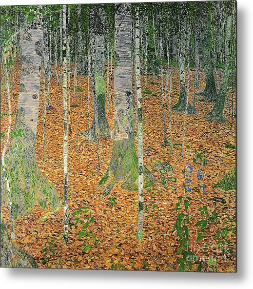 The Metal Print featuring the painting The Birch Wood by Gustav Klimt