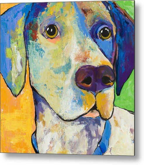 German Shorthair Animalsdog Blue Yellow Acrylic Canvas Metal Print featuring the painting Yancy by Pat Saunders-White