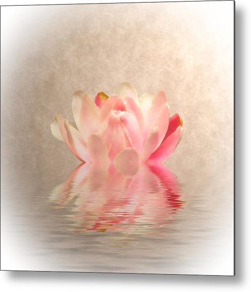 Waterlilies Metal Print featuring the photograph Waterlily by Sharon Lisa Clarke