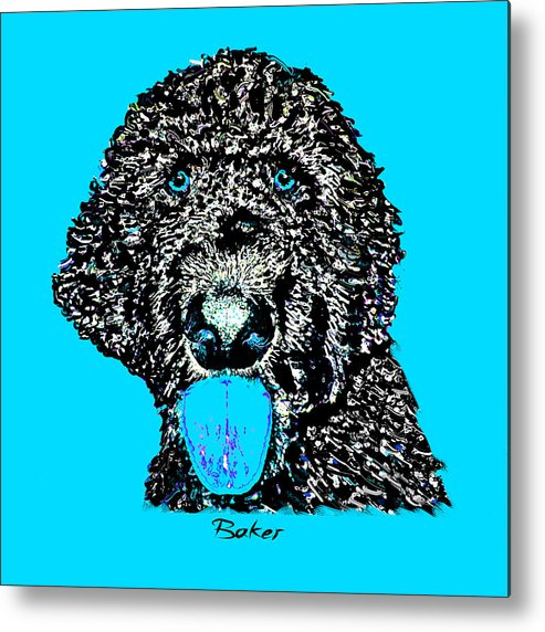 Poodle Metal Print featuring the digital art Baker by Dale Hall