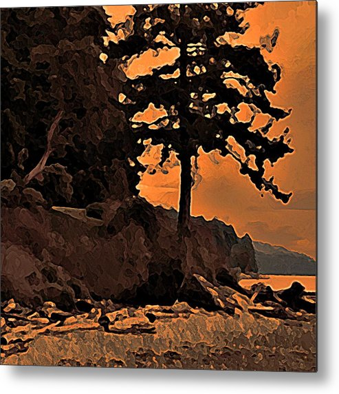 Beach Metal Print featuring the photograph Beach Silhouette by Stanley Funk