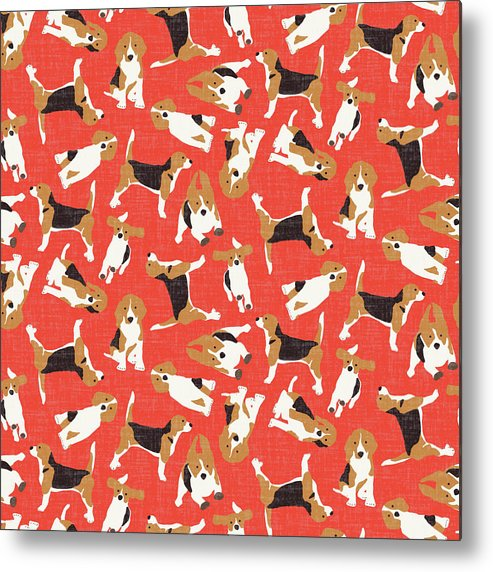 Beagle Metal Print featuring the drawing Beagle Scatter Coral Red by MGL Meiklejohn Graphics Licensing