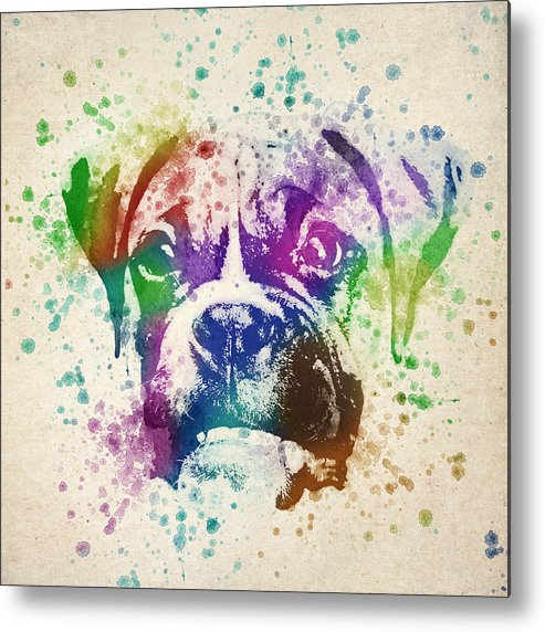 Boxer Metal Print featuring the drawing Boxer Splash by Aged Pixel