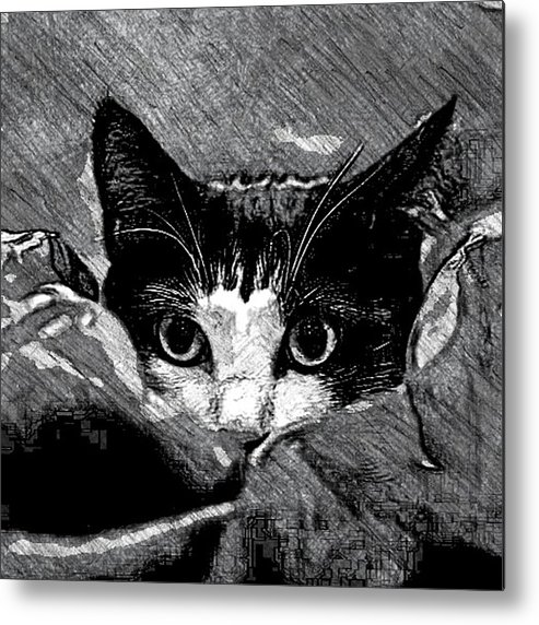 Cat Metal Print featuring the drawing Cat In Hiding by Kathleen Odenthal