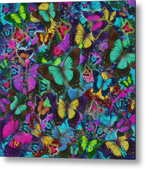 Alixandra Mullins Metal Print featuring the photograph Cloured Butterfly Explosion by Alixandra Mullins