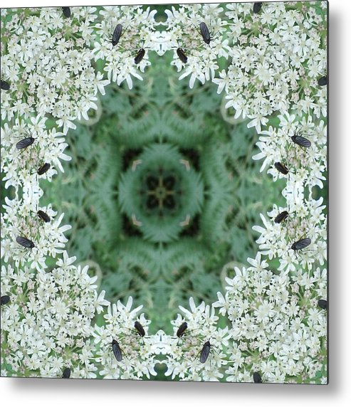 Calm Metal Print featuring the photograph Cornwall Flowers Two by Coventry Wildeheart