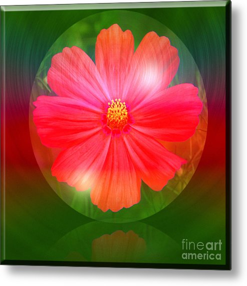 Cosmos Metal Print featuring the photograph Cosmos Bubble by Michelle Orai