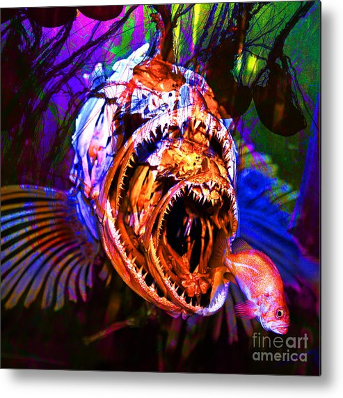 Jelly Metal Print featuring the photograph Creatures Of The Deep - Fear No Fish 5d24799 Square by Wingsdomain Art and Photography
