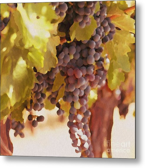 Grapes Metal Print featuring the drawing Crush Time by Artist and Photographer Laura Wrede