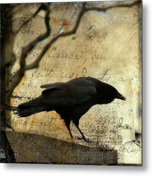 Blackbird Metal Print featuring the digital art Curious Crow by Gothicrow Images