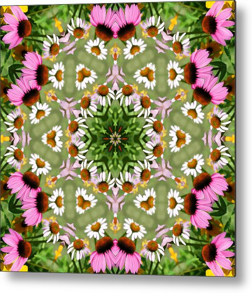 Daisies Metal Print featuring the photograph Daisy Daisy Do Kaleidoscope by Kathy Clark