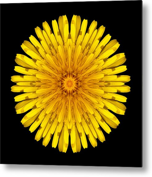 Flower Metal Print featuring the photograph Dandelion Flower Mandala by David J Bookbinder