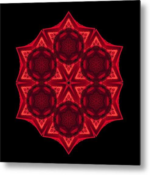 Flower Metal Print featuring the photograph Dying Amaryllis IIi Flower Mandala by David J Bookbinder