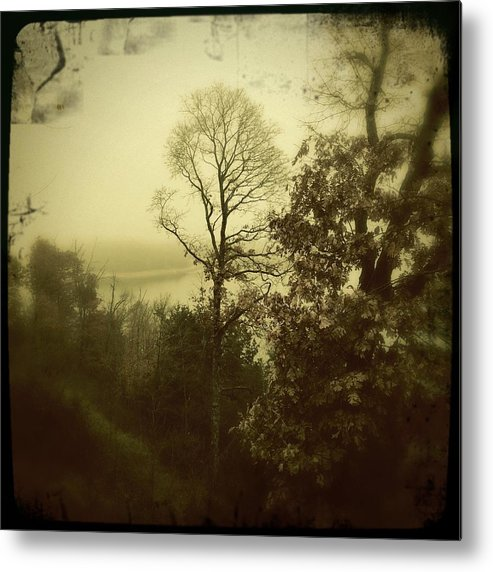 Metal Print featuring the photograph Fall On The Lake by Steve Wood